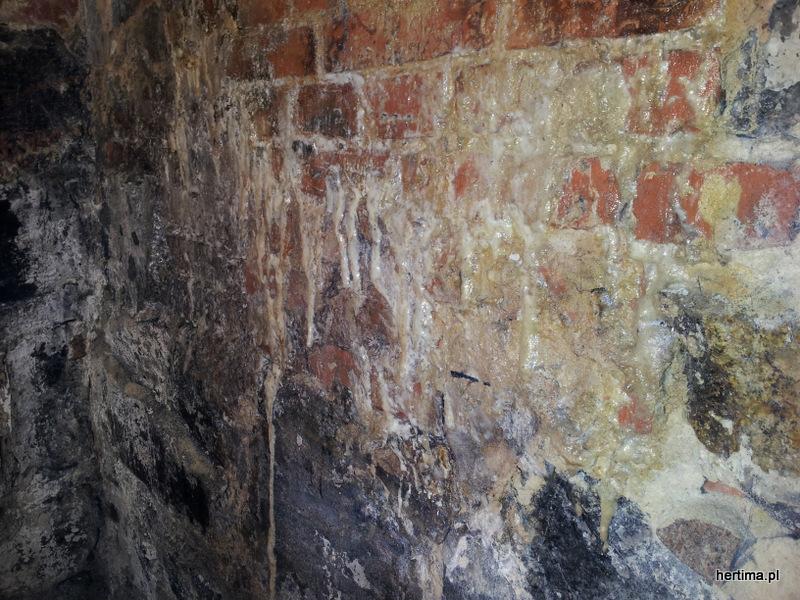 Mur ceglano kamienny po aplikacji HERMON®-I